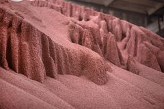 Sparato del prodotto chimico misto, granelli artificiali del fertilizzante di pianta dell'azoto in fabbrica Fotografia Stock