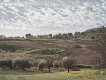 Sparato di un ambiente rurale immagine stock libera da diritti