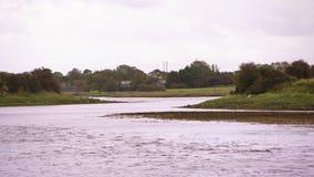 Sparato di un fiume stretto in Irlanda archivi video