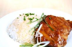 spare för rice för porkstöd royaltyfria bilder