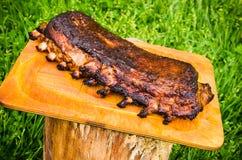 Spare ribs in the garden Royalty Free Stock Photos