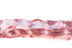 Spare ribs raw isolated Royalty Free Stock Photography