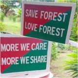 Sparen bos stock afbeelding