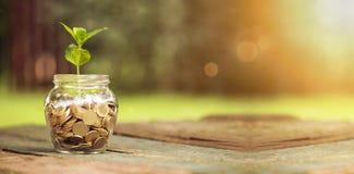 Sparen geldbanner Stock Fotografie