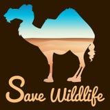 Sparen het wildthema met kameel en woestijn vector illustratie