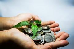Sparen Sie Geld für Zukunft Stockbilder