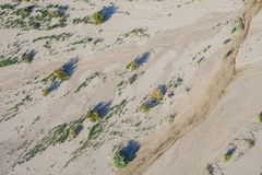 Sparse Sand Desert. Sparese growth in the sand desert of the southwest United States stock photos