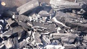 Sparga le ceneri ed il fuoco misti con fumo nel vento dai carboni caldi stock footage