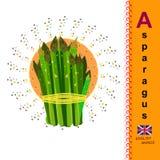Spargel Englisches Alphabet A Der erste Buchstabe im Alphabet Lizenzfreie Stockfotos