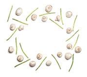 Spargel und Pilze lokalisiert auf Weiß Lizenzfreie Stockbilder