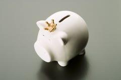 Spargris besparingar, valuta arkivfoton