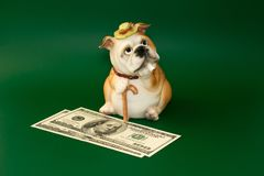 Spargris för pengar som föreställs i bilden av en oligarch Royaltyfri Bild
