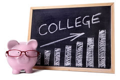 Spargris med högskolabesparing- eller avgiftdiagrammet royaltyfri bild