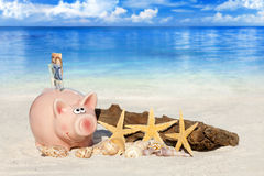 Spargris med sedlar på stranden Arkivfoto