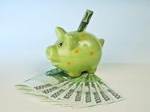Spargris och pengar Royaltyfri Fotografi