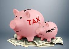 Spargris på dollar-, skatt- och vinstbegrepp royaltyfria bilder