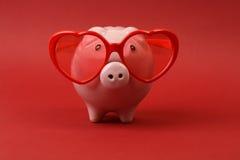 Spargris som är förälskad med röd hjärtasolglasögon Arkivfoto