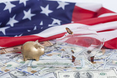 Spargrisar på dollar med amerikanska flaggan royaltyfri foto