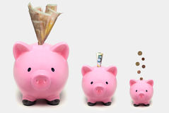 Spargrisar som i storlek ökar med euro Växande investeringbegrepp Royaltyfri Bild
