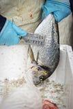 Sparidaehavsbraxen på fiskmarknad Royaltyfri Fotografi