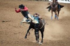 sparka bakut cowboy för bronco som faller av Arkivfoton