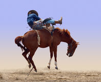 sparka bakut hästrodeo Royaltyfri Bild
