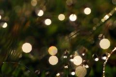 sparkle arkivfoton