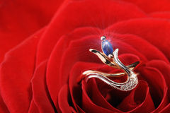 Sparkle ring in a red rose Royalty Free Stock Photography