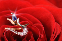 Sparkle ring in a red rose Stock Image