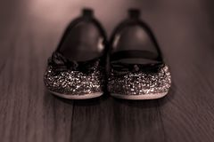 Sparkle and shine Royalty Free Stock Photo