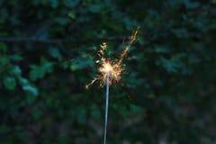 sparkler στοκ εικόνα