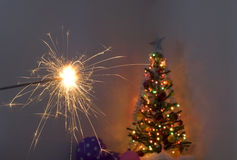 Sparkler and christmas tree Royalty Free Stock Image