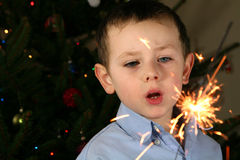 Sparklers Royalty Free Stock Photography
