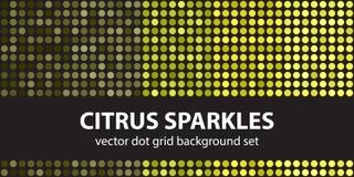 Sparkles цитруса точечного растра польки установленные Геометрическое вектора безшовное Стоковые Изображения RF