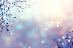 Sparkles on branches under falling snow. Glare festive decoration. Bokeh blurred texture. Pearl gleam. Magical twilight in winter. Stylish image for a variety of Royalty Free Stock Photos
