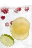 Sparkling. Lemon, Lime,  Rasberry sparkling refreshment. Perfect for invitations Stock Image