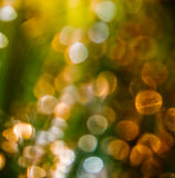 Sparkling. Abstract detail of soft spots of light Stock Photo
