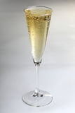 Sparkling alcohol drink Stock Photography