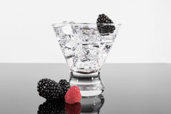Sparkling beverage in a martini glass with blackberries and ra Stock Images