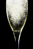 Sparkling champagne Royalty Free Stock Photo