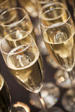 Sparkling Champagne Royalty Free Stock Photography