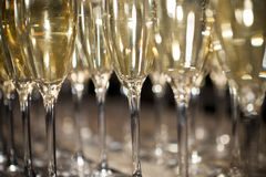 Sparkling Champagne Stock Images