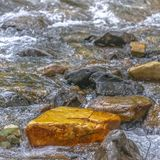 Sparkling clear water flowing on a rocky stream royalty free stock image