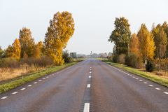 Sparkling trees by roadside Stock Photos
