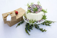 Sparkling Cranbery White Chocolate Cake with gift boxes backgrou Stock Images