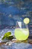 Sparkling cucumber mint gin and tonic fizz with aloe vera on marble table. Copy space. Royalty Free Stock Image