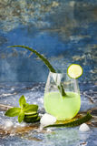 Sparkling cucumber mint gin and tonic fizz with aloe vera on marble table. Copy space. Dragon tail cocktail for fans party. Stock Photos