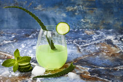 Sparkling cucumber mint gin and tonic fizz with aloe vera on marble table. Copy space. Dragon tail cocktail for fans party. Stock Image