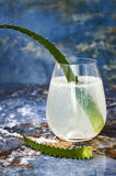 Sparkling cucumber mint gin and tonic fizz with aloe vera on marble table. Copy space. Dragon tail cocktail for fans party. Stock Photography