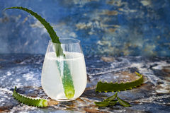 Sparkling cucumber mint gin and tonic fizz with aloe vera on marble table. Copy space. Dragon tail cocktail for fans party. Sparkling cucumber mint gin and royalty free stock image